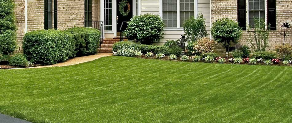 Regular landscaping maintenance and ongoing lawn mowing at a home in Thornton, CO.